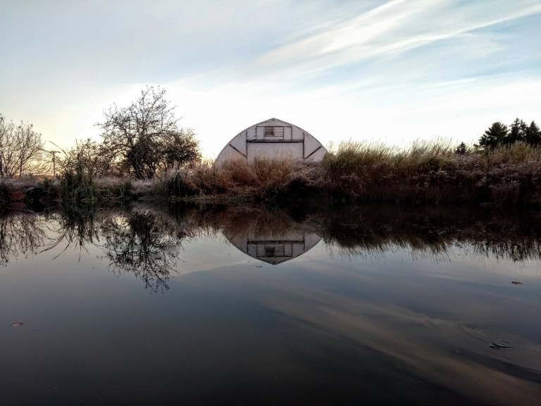 organic farm pond