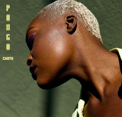 Pongo – Canto