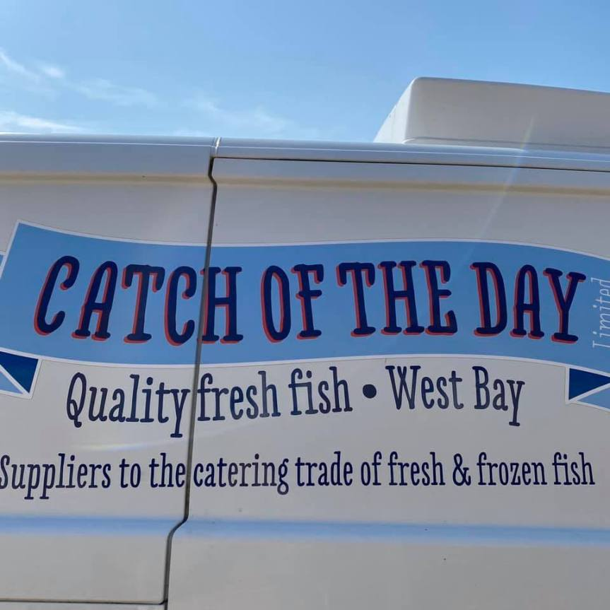 Catch Of The Day – Every Wednesday