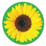 Sunflower HD_logo