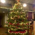 Stableyard Christmas Tree