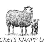 Specketts Knapp Lamb