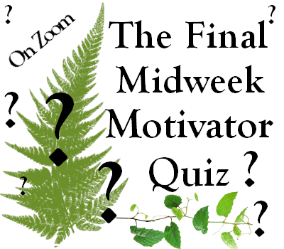 The Final Midweek Motivator Quiz – Wednesday 24th March