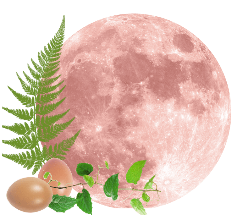 Full Moon on Tuesday, 27th April