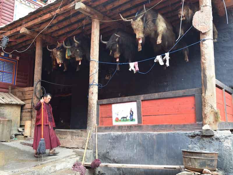 Dzongsar corner