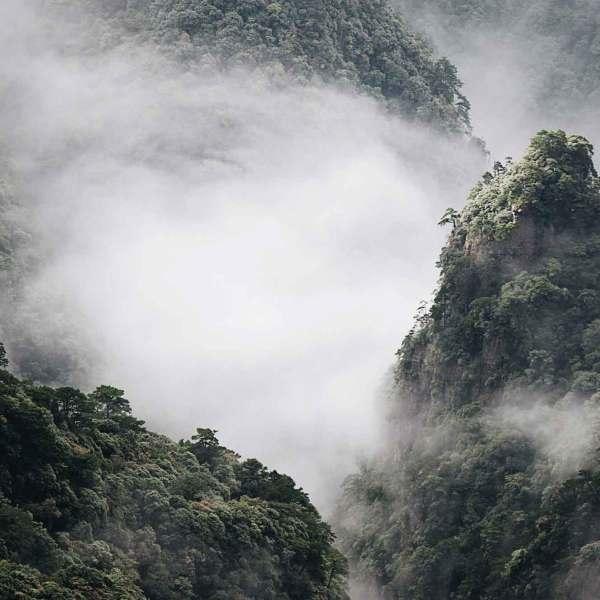 fanjing-mountain