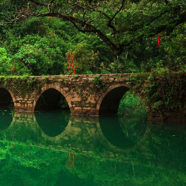 Zhangjiang Scenic Area