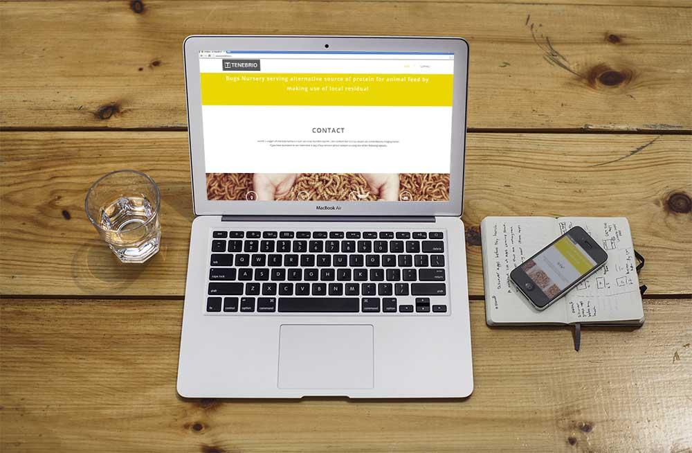 tenbrio-website