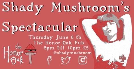 Shady Mushroom