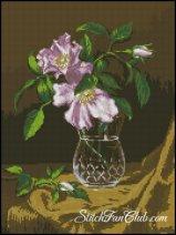 1268246444_g-712-natura-cu-flori-de-maces