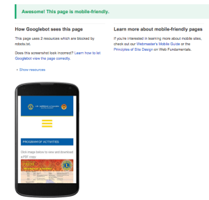 Is your site mobile friendly from Google's perspective?