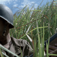 Amazon Instant Video of the Week: The Thin Red Line