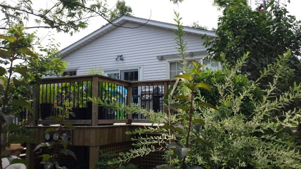 Niagara Deck - After Construction Front Right View