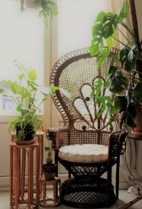 Broesse tropisch plantenkaffee pauwstoel emanuelle stoel monstera calathea jatropha
