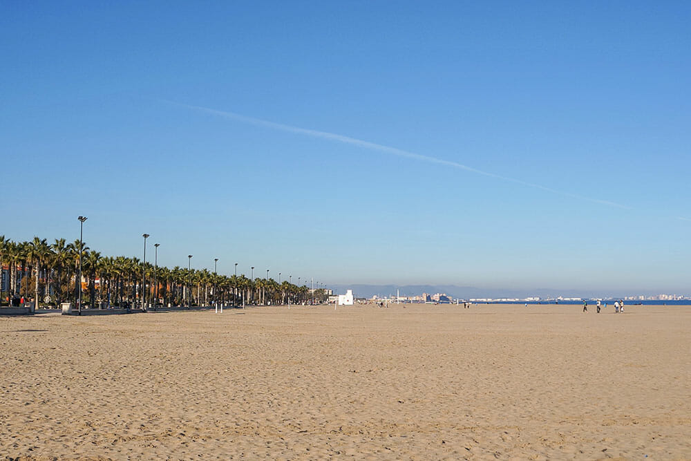 Empty Malvarrosa Beach with palm trees - Things to do in Valencia