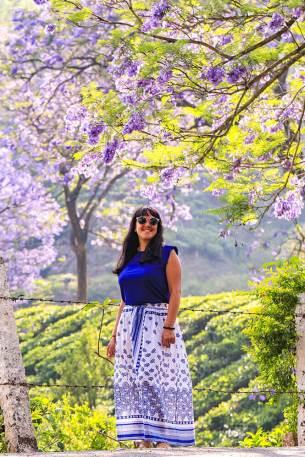Portrait with tea plantation and jacaranda tree in bloom in Munnar, Kerala - #munnar #kerala #india