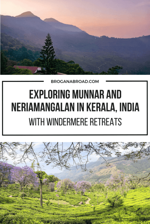 Read why Windermere Retreats is one of the best resorts in Munnar and the perfect base to explore the tea plantations, jacarandas in bloom and the neelakuirinji mass bloom. Combine this visit with Neriamangalam, half way between Kochi and Munnar and stay at one of the most unique locations in Kerala, India. #munnar #neriamangalam #teaplantations #india #jacaranda #neelakuirinji