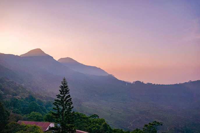 Sunrise view over tea plantations in Munnar - #munnar #kerala #india