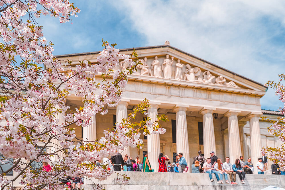 Classical Greek-style building with people sitting in front of it enjoying the sunny weather, and cherry blossom branches in the foreground