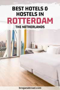 Where to Stay in Rotterdam - Best Hotels and Hostels in Rotterdam