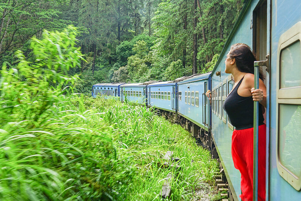 Standing on the open door of a blue train as it curves round the track through the forest