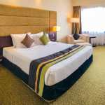 Hotel room with double bed with brown and green cushions and green carpet