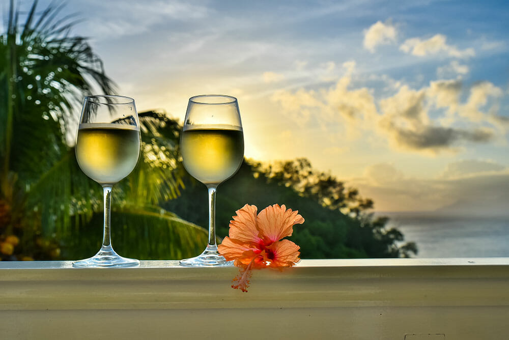Two glasses of white wine with a hibiscus flower next to them and palm trees and see in the background