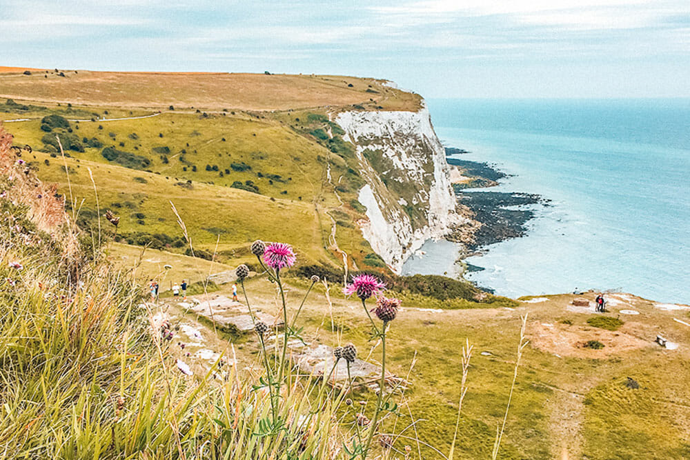 Grass lands and white cliffs over the sea