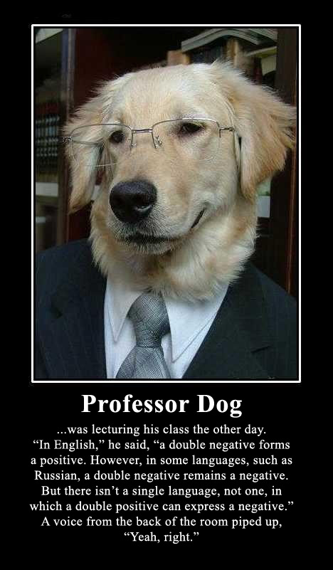 Professor Dog Joke Of The Day  Bro J Simpson