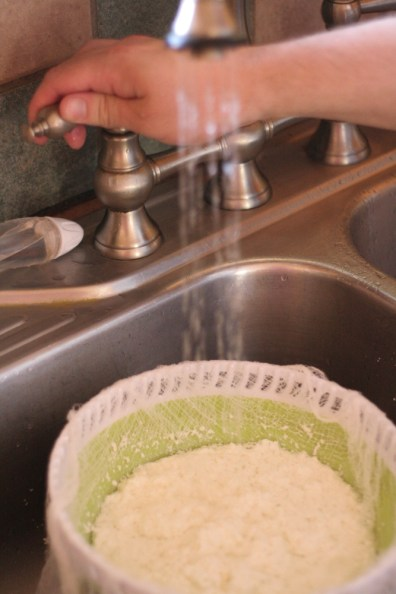 Rinsing Homemade Paneer Cheese Curds