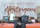 The dfrntpigeon Perspective: Portland's Powerful Streetwear Brand