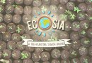 Ecosia is a Search Engine That Plants Trees