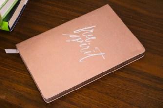 Fringe Studios Free Spirit Journal