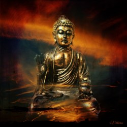 Enlightenment: Absorbing New Knowledge