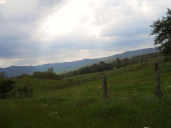 Appalachian Trail 405
