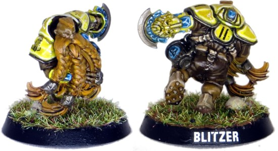 Dwarf Blood Bowl Blitzer #11