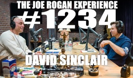 Joe Rogan Experience #1234 - David Sinclair