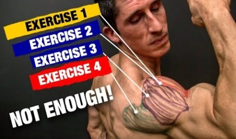 The PERFECT Shoulder Workout (Sets and Reps Included)