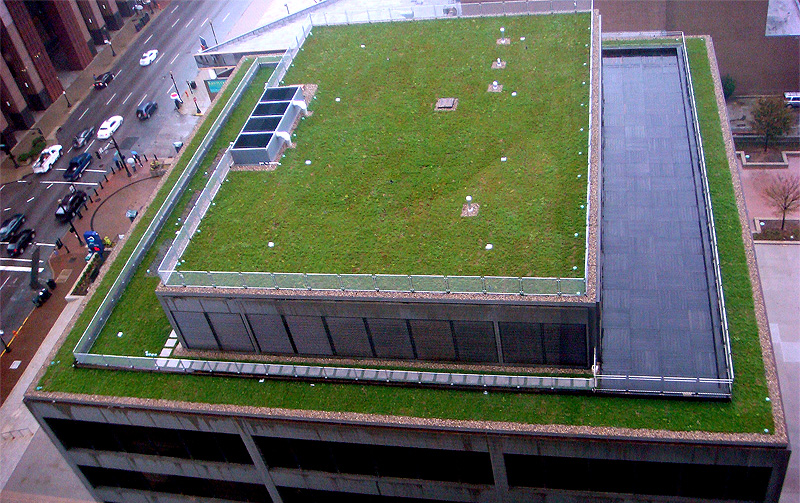 Green Roof At The American Life Building Broken Sidewalk
