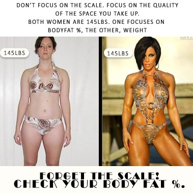 Updated: The Weight/Body Fat Conundrum