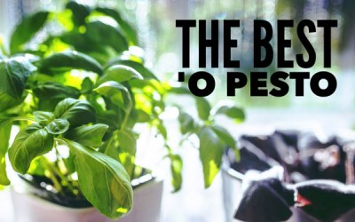 The Best 'o Pesto Right in Your Own Kitchen