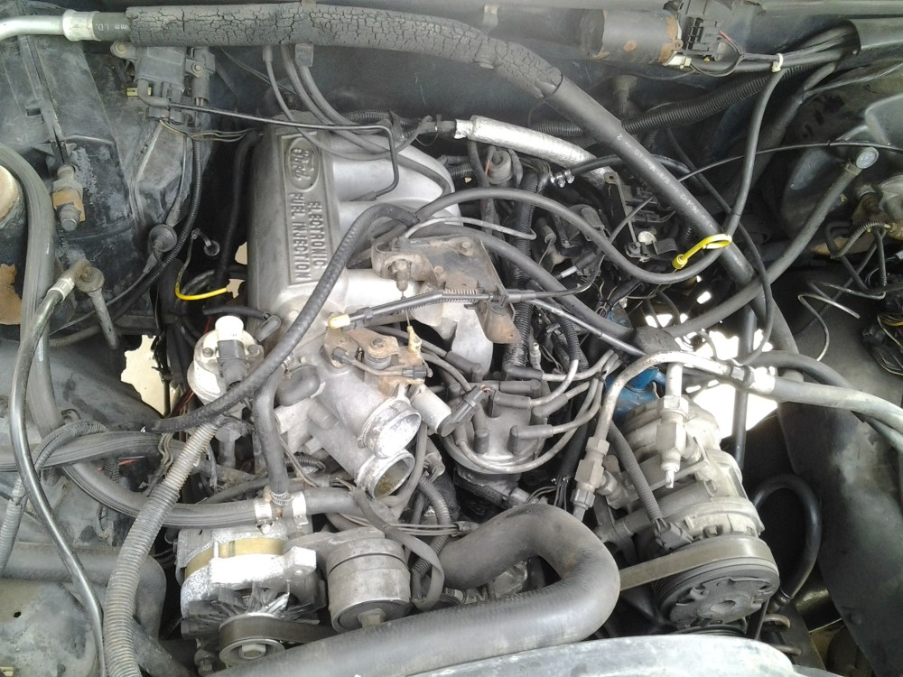 medium resolution of what engine in my 1988 bronco 80 96 ford bronco 66 96 ford rh broncozone com ford 5 8 engine diagram