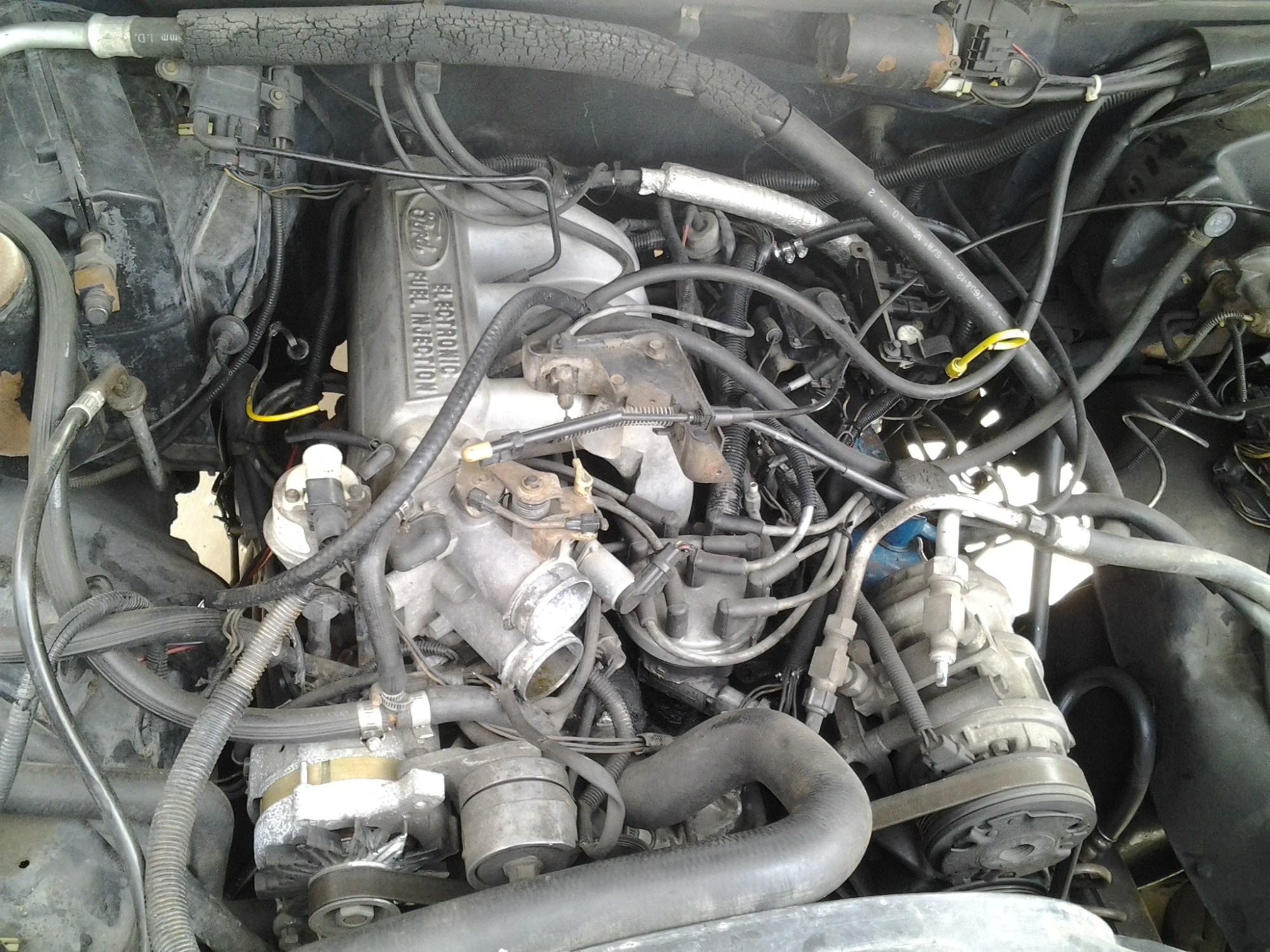 hight resolution of what engine in my 1988 bronco 80 96 ford bronco 66 96 ford rh broncozone com ford 5 8 engine diagram