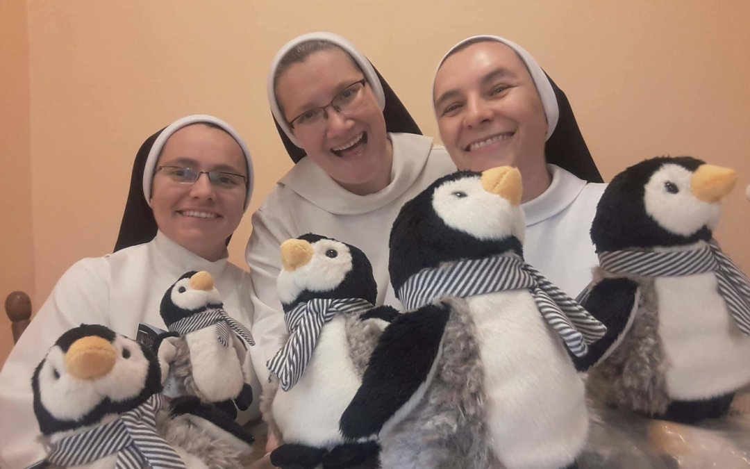 Siostry świętowały Dzień Pingwina i zebrały 5 mln zł