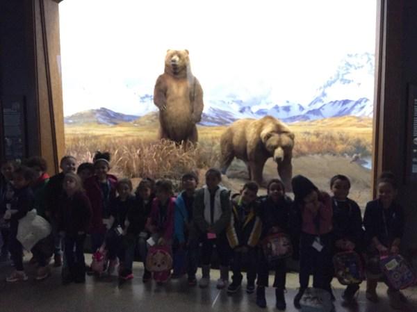 Kindergarten Visits American Museum Of Natural History
