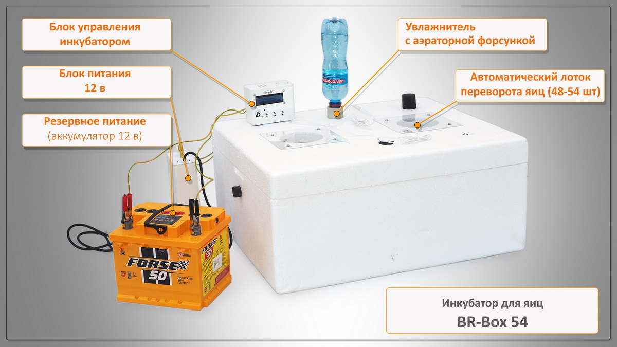 Inkubator do jaj Br-Box 50