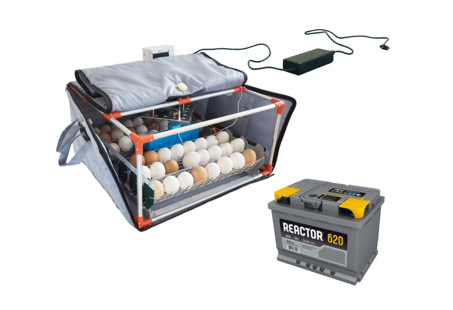 Inkubator do jaj Broody Micro Battery - Inkubator z baterią, inkubator z zasilaniem awaryjnym
