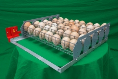 Лоток автопереворот яєць Standart 45