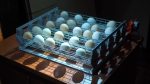 Review Egg Incubator Broody Zoom