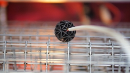 Επανεξέταση αυγό Θερμοκοιτίδα μελαγχολικός Zoom
